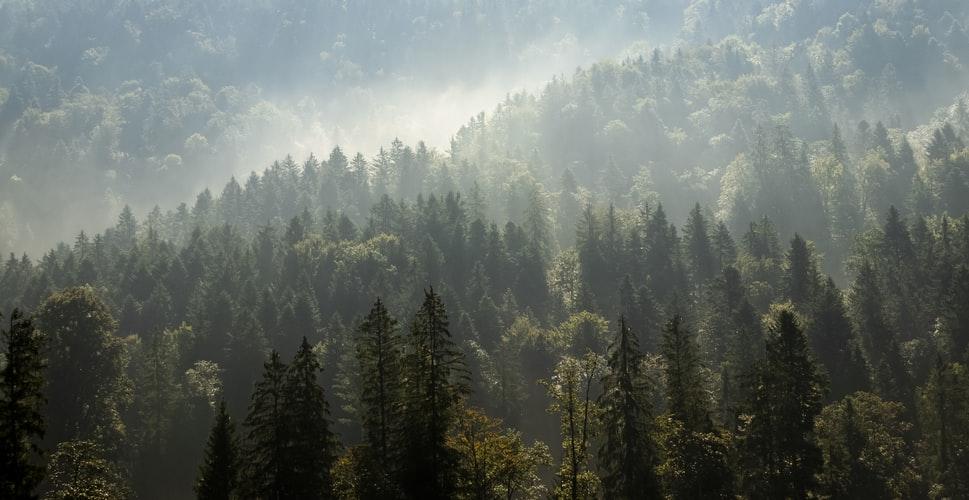 ลักษณะ ภูมิ อากาศ ทวีป อเมริกาเหนือ